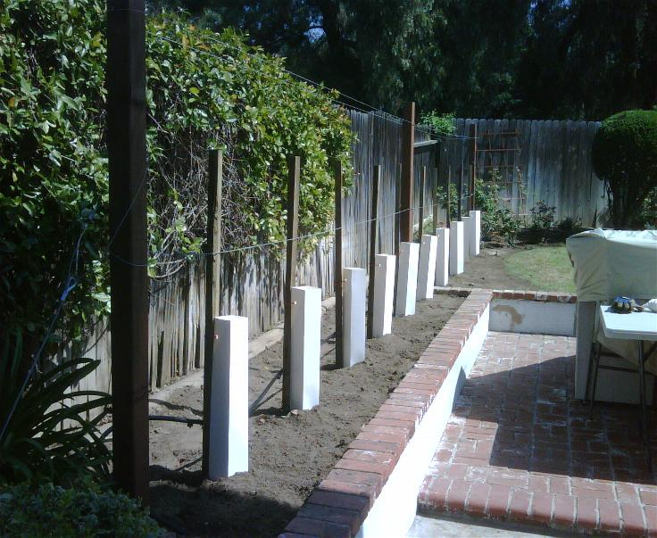Small Backyard Vineyard my home vineyard – a beautiful, custom home vineyard